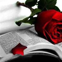 Psalmul 146 – Biblie