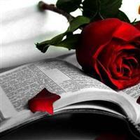 Capitolul 19 din Pildele lui Solomon – Biblie
