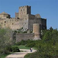 Castele Medievale