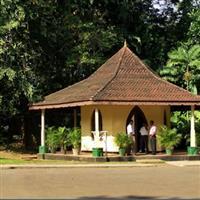 Sri Lanka, Peradenia5