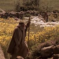 Capitolul 11 din Zaharia – Biblie