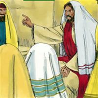 Capitolul 7 din Matei – Biblie Noul Testament