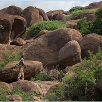 Somalian landscapes-1