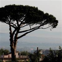 periplu greco-roman 25 Reggia de Caserta a