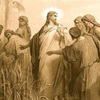 Capitolul 2 Partea II-a din Marcu – Biblie Noul Testament