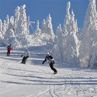 Cu Nikonul la skiat.Brixental