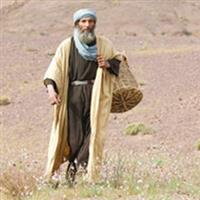 Capitolul 10 Partea II-a din Luca – Biblie Noul Testament