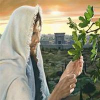 Capitolul 13 din Luca – Biblie Noul Testament