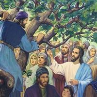 Capitolul 19 Partea I din Luca – Biblie Noul Testament