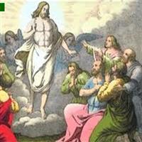 Capitolul 24 Partea IV-a  din Luca – Biblie Noul Testament