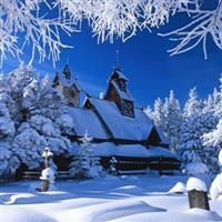 Iarna �n alb