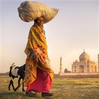 Agra-Taj Mahal-Amazing images