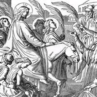 Capitolul 12 Partea II-a din Ioan – Biblie Noul Testament