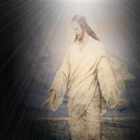 Capitolul 15 din Ioan – Biblie Noul Testament
