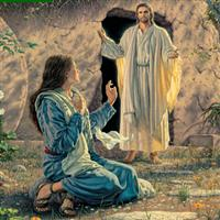 Capitolul 20 Partea II-a din Ioan – Biblie Noul Testament