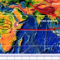 Calatoria lui Homo sapiens