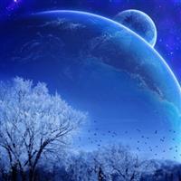 Nopți cu stele