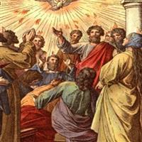 Capitolul 11 din Epistola către Romani a Sfantului Apostol Pavel – Biblie Noul Testament