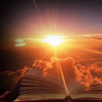 Capitolul 4 din Epistola a doua către Timotei a Sfântului Apostol Pavel – Biblie Noul Testament