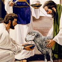 Capitolul 5 din Epistola către Evrei a Sfântului Apostol Pavel – Biblie Noul Testament