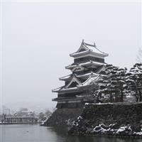 Castele in iarna