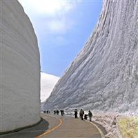 Canionul Zapezii- Japonia