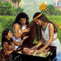 REMIX - Biblia Vechiul Testament Exodul Cap.2 Partea VI-a