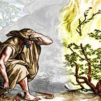 REMIX - Biblia Vechiul Testament Exodul Cap.3 Partea II-a
