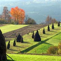 Peisaje româneşti