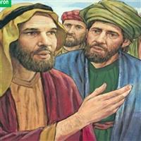 REMIX - Biblia Vechiul Testament Numerii Cap.14