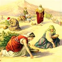 REMIX - Biblia Vechiul Testament Deuternomul Cap.8