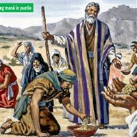 REMIX - Biblia Vechiul Testament Deuternomul Cap.11