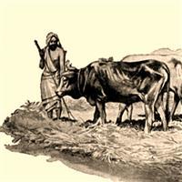 REMIX - Biblia Vechiul Testament Deuternomul Cap.25