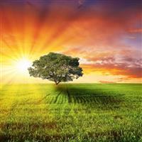 In cautarea celui mai frumos rasarit de soare