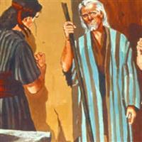 REMIX - Biblia Vechiul Testament Cartea Judecătorilor Cap. 6 Partea IV-a