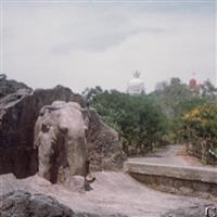 Locuri pe unde am fost-India-Odisha-Puri
