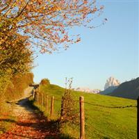 Din perlele Dolomitilor.Alpe di Siusi.