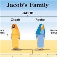 REMIX - Biblia Vechiul Testament Cartea I a Cronicilor Cap. 2