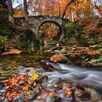 Poduri de legendă