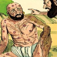 REMIX - Biblia Vechiul Testament Cartea lui Iov Cap. 8