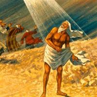 REMIX - Biblia Vechiul Testament Cartea lui Iov Cap. 38