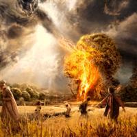 REMIX - Biblia Vechiul Testament Psalmul 6