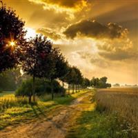 REMIX - Biblia Vechiul Testament Psalmul 118