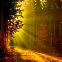 REMIX - Biblia Vechiul Testament Psalmul 141