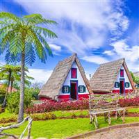 Insula eternei primăveri Madeira