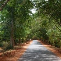 Auroville,oras nou,international