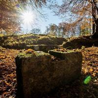 Patrimoniul UNESCO-Fortărețele dacice din Munții Orăștiei - III