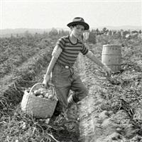 USA 1940-1969