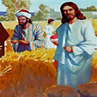 REMIX - Biblia Noul Testament Matei  Capitolul 12  Partea II-a  pptx.