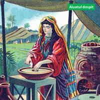REMIX - Biblia Noul Testament Matei  Capitolul 13  Partea VII-a  pptx.